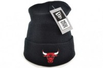 Шапка Chicago Bulls logo